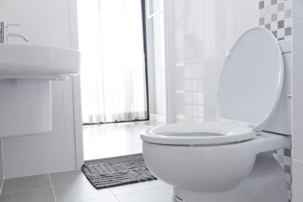 Toilet-Repair-Kirkland-WA